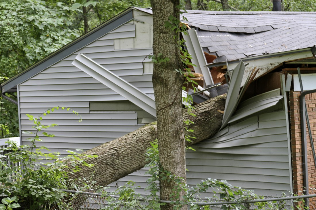 Storm Damage Repair Northville